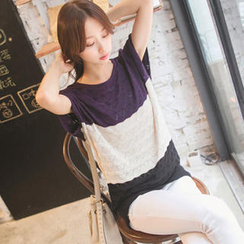 Tokyo Fashion - Short-Sleeve Color-Block Knit Top