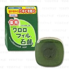 Kokuryudo - Chlorophyll Soap