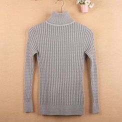 Coralie - Long Sleeved Turtle Neck Knit Top