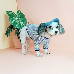 LIFE STORY - Pet Stripe T-Shirt Costume
