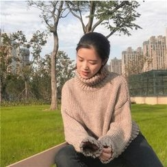 ALIN STYLE - Turtleneck Cropped Sweater