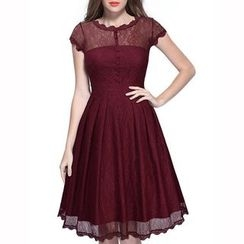 Dream a Dream - Short-Sleeve Lace Paenl Pleated Dress
